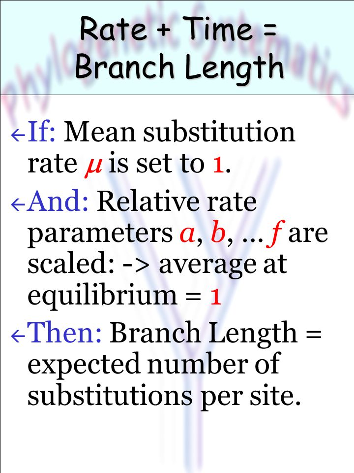 Rate + Time = Branch Length  If: Mean substitution rate  is set to 1.