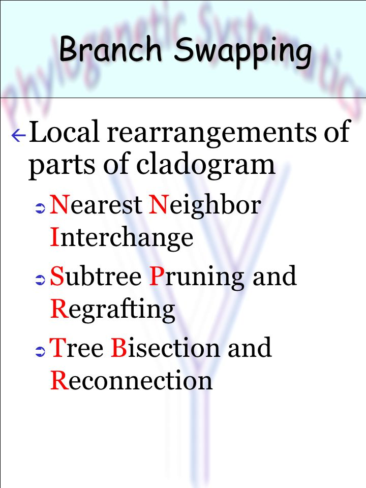 Branch Swapping ß Local rearrangements of parts of cladogram  Nearest Neighbor Interchange  Subtree Pruning and Regrafting  Tree Bisection and Reconnection