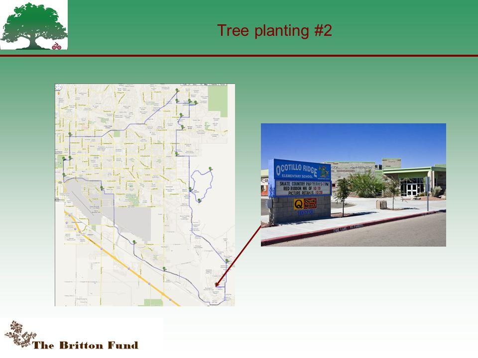 Tree planting #2
