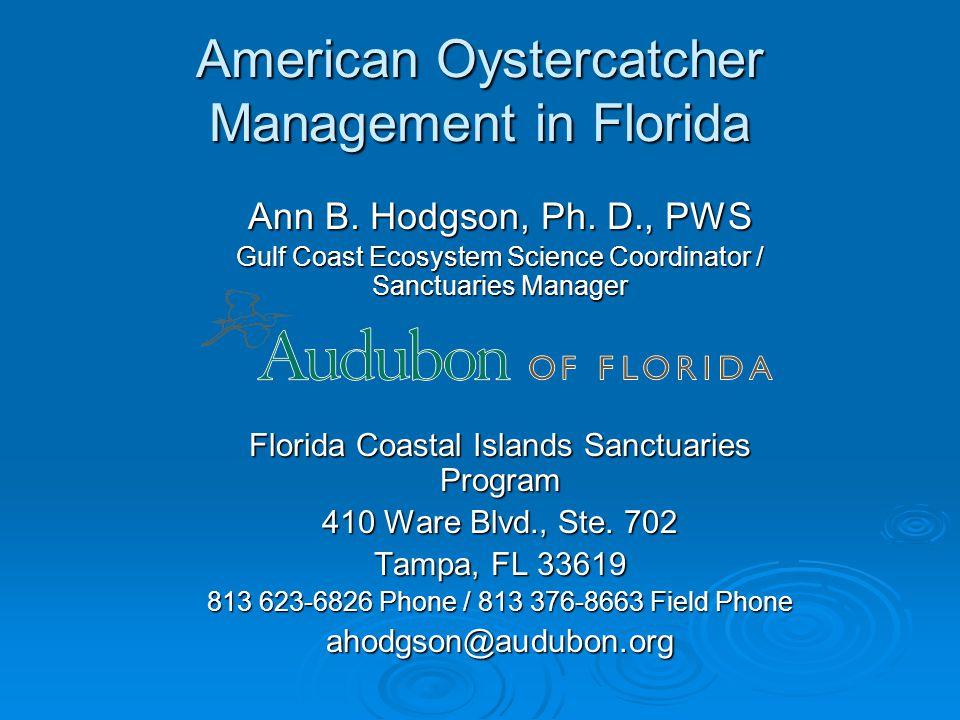 American Oystercatcher Management in Florida Ann B.