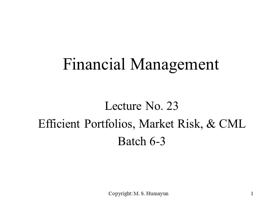Copyright: M. S. Humayun1 Financial Management Lecture No. 23 Efficient Portfolios, Market Risk, & CML Batch 6-3