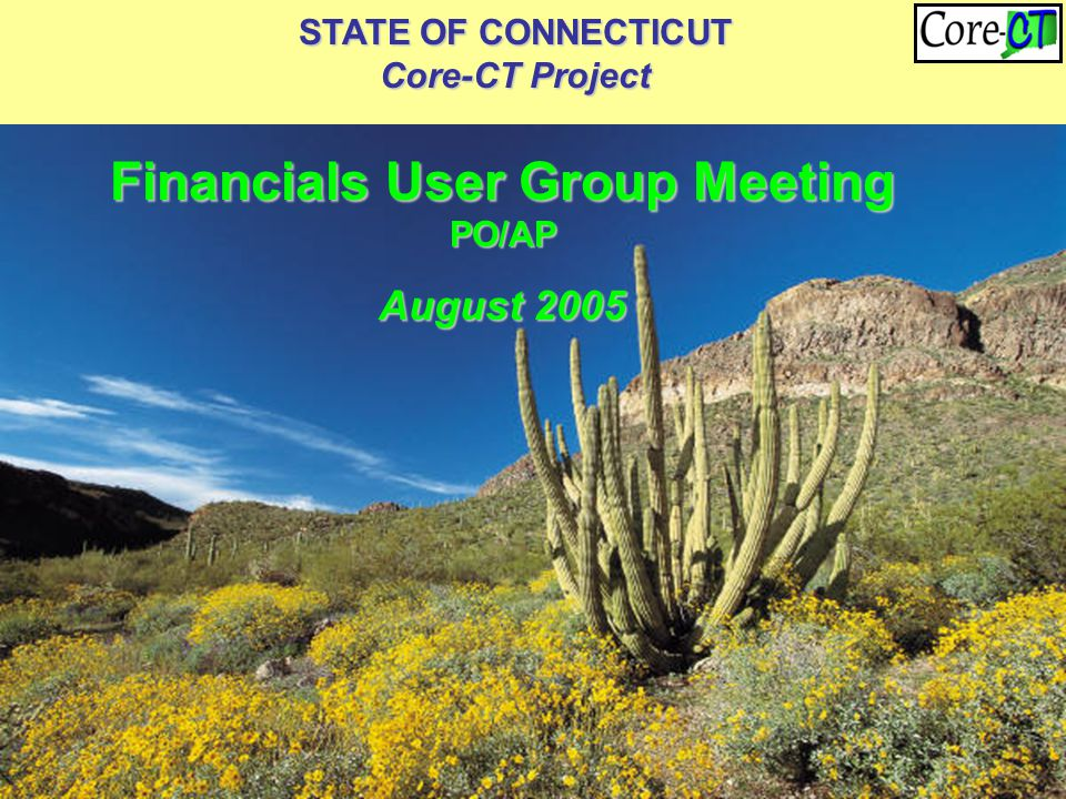 STATE OF CONNECTICUT Core-CT Project Financials User Group Meeting PO/AP August 2005