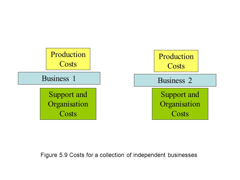 Business 1 Support and Organisation Costs Production Costs Business 2 Support and Organisation Costs Production Costs Figure 5.9 Costs for a collection of independent businesses