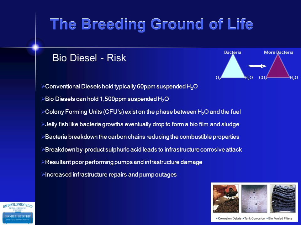 The Breeding Ground of Life Bio Petrol - Risk  To avoid engine issues fuel must exist as a single phase  Ethanol is hydroscopic and will instantly attract H 2 O causing phase separation  Separation layer of water and ethanol will lay in the tank bottom just above sludge layer  Separation layer will increase over time  Without removal contamination will be delivered through the pumps  Serious end-user issues etc.