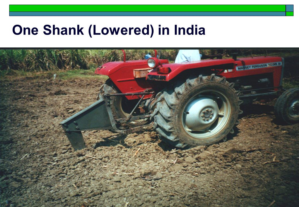 14 One Shank (Lowered) in India