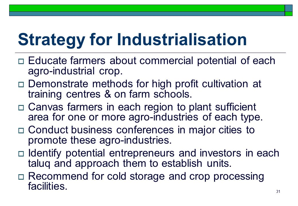 31 Strategy for Industrialisation  Educate farmers about commercial potential of each agro-industrial crop.