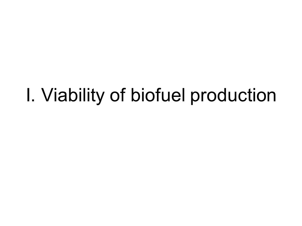I. Viability of biofuel production