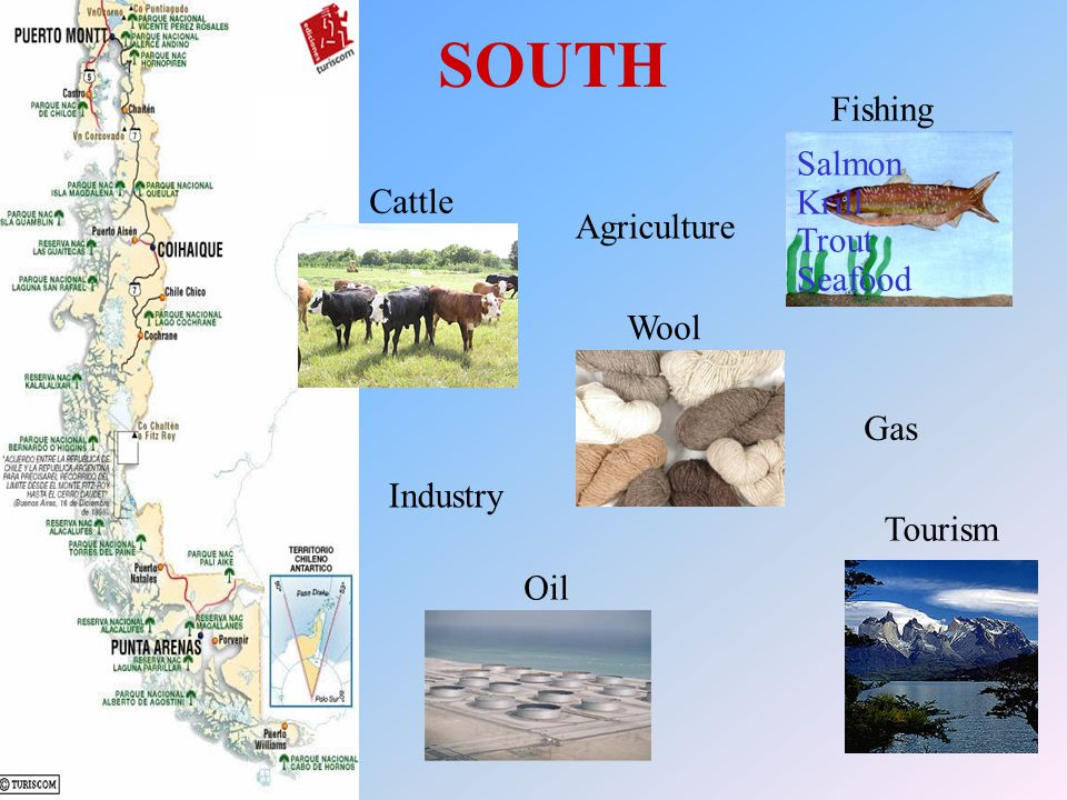 SOUTH Fishing Industry Agriculture Tourism Gas Wool Cattle Oil Salmon Krill Trout Seafood