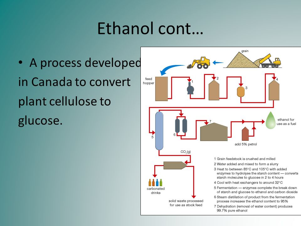 Ethanol cont… A process developed in Canada to convert plant cellulose to glucose.
