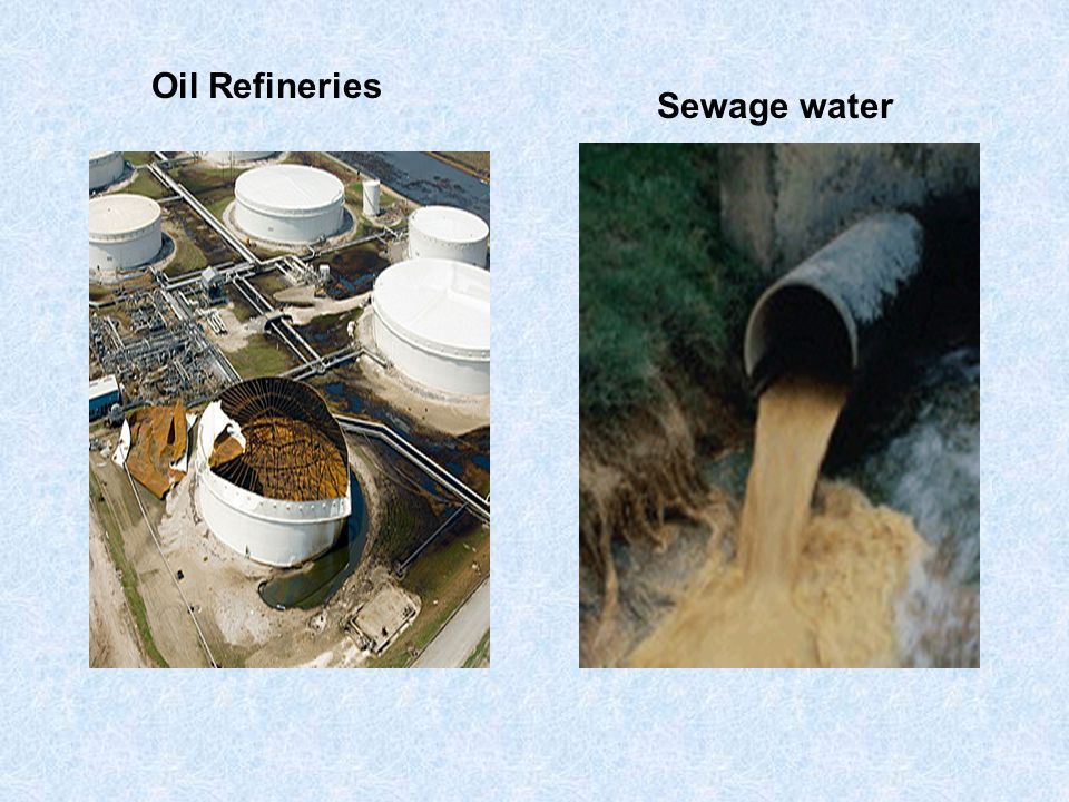 Industrial wastes Sewage water Agricultural wastes Release of Superheated water Addition of waste and oil from refineries