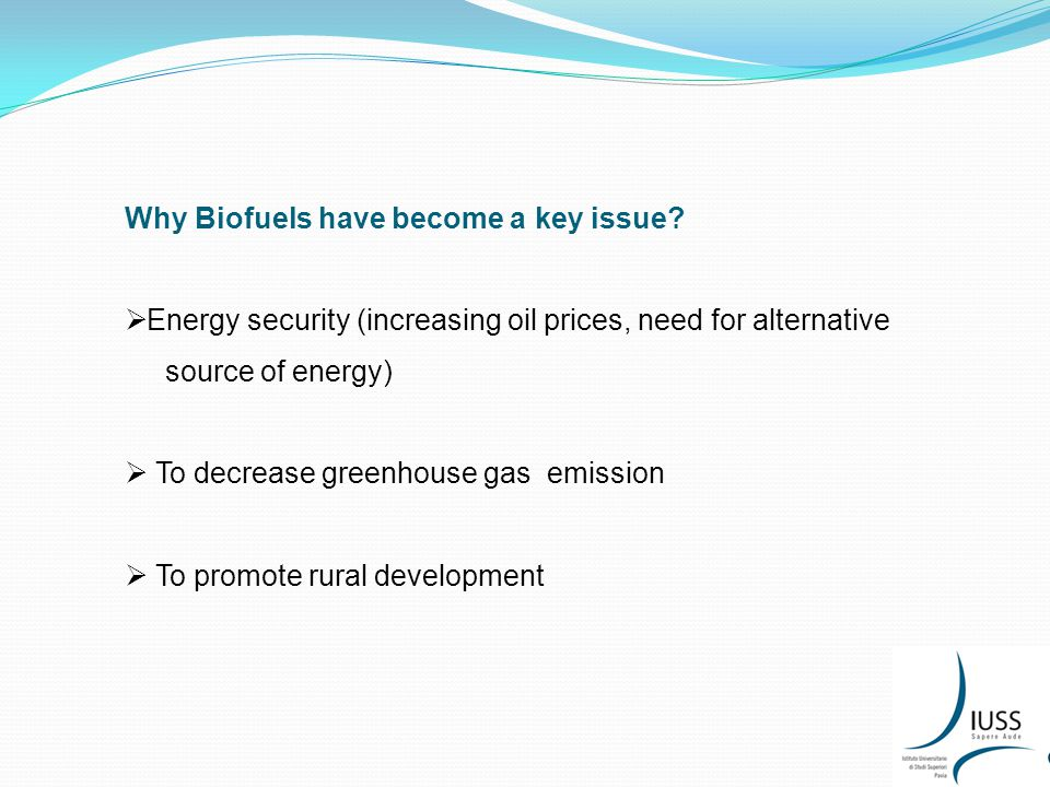Why Biofuels have become a key issue.