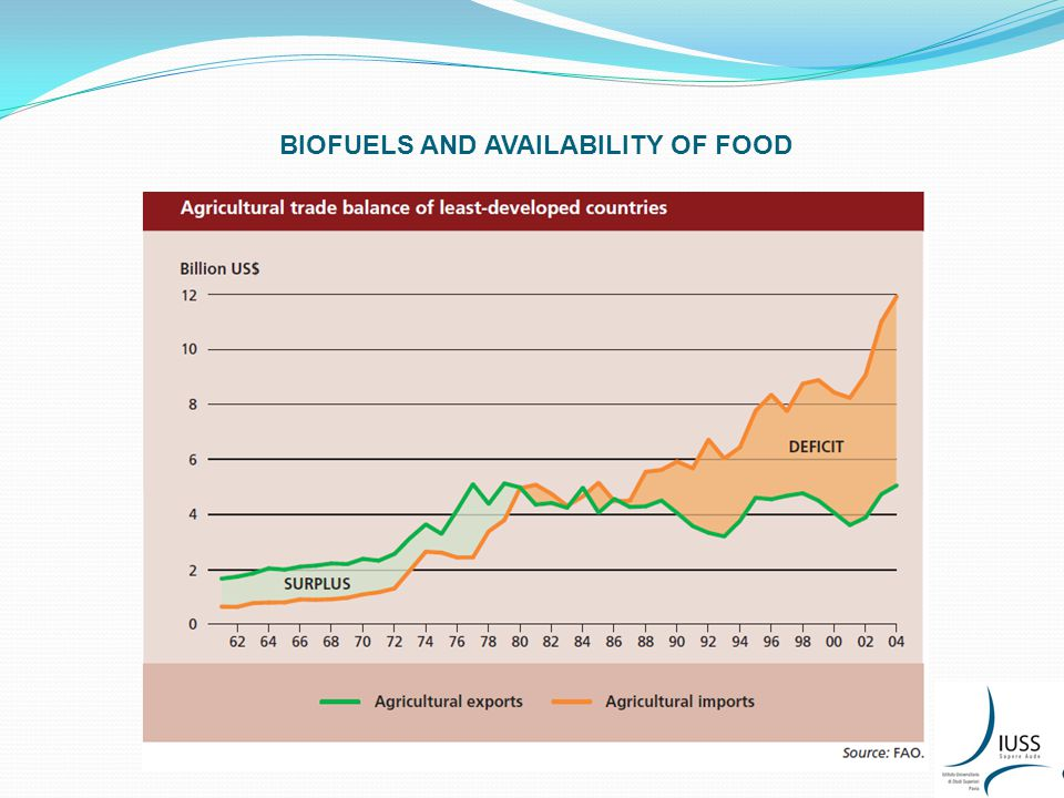 DIMENSIONS OF FOOD SECURITY AND BIOFUELS: 2.ACCESS TO FOOD VS.