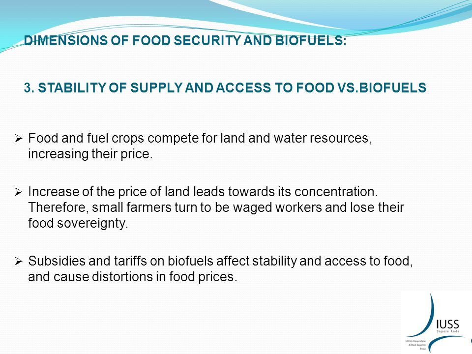 DIMENSIONS OF FOOD SECURITY AND BIOFUELS: 4.FOOD UTILIZATION VS.
