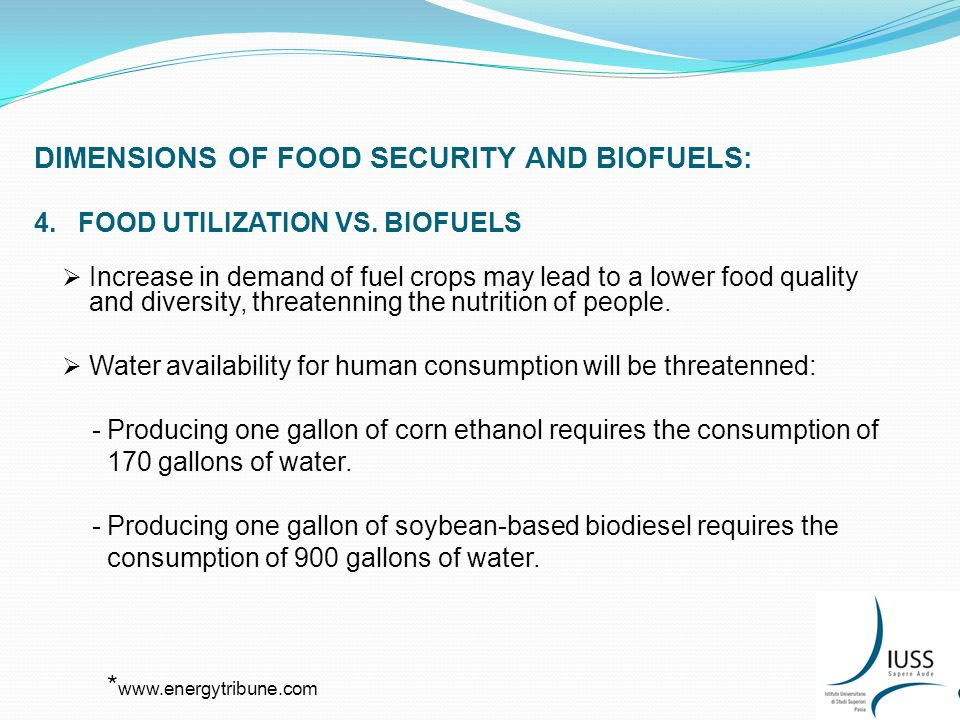 DIMENSIONS OF FOOD SECURITY AND BIOFUELS: 4. FOOD UTILIZATION VS.