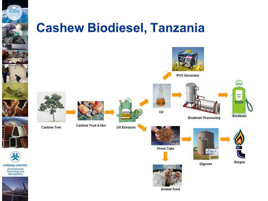 35 Cashew Biodiesel, Tanzania