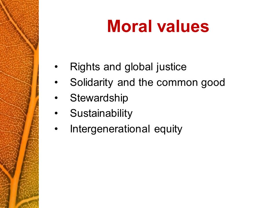 Moral values Rights and global justice Solidarity and the common good Stewardship Sustainability Intergenerational equity