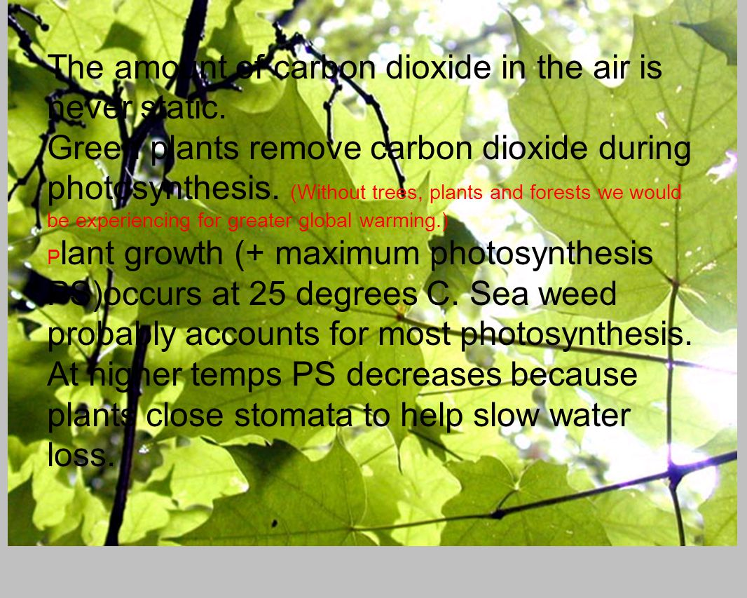 The amount of carbon dioxide in the air is never static.