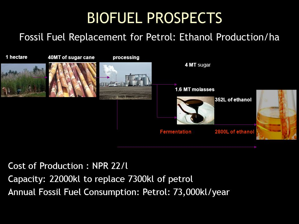 Fossil Fuel Replacement for Petrol: Ethanol Production/ha Cost of Production : NPR 22/l Capacity: 22000kl to replace 7300kl of petrol Annual Fossil Fuel Consumption: Petrol: 73,000kl/year BIOFUEL PROSPECTS 1 hectare 40MT of sugar caneprocessing 4 MT sugar 1.6 MT molasses 352L of ethanol 2800L of ethanolFermentation