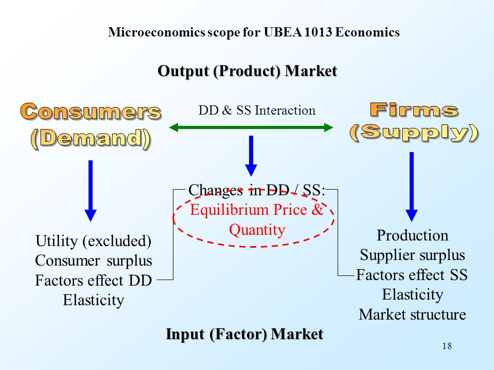 18 DD & SS Interaction Output (Product) Market Utility (excluded) Consumer surplus Factors effect DD Elasticity Production Supplier surplus Factors ef