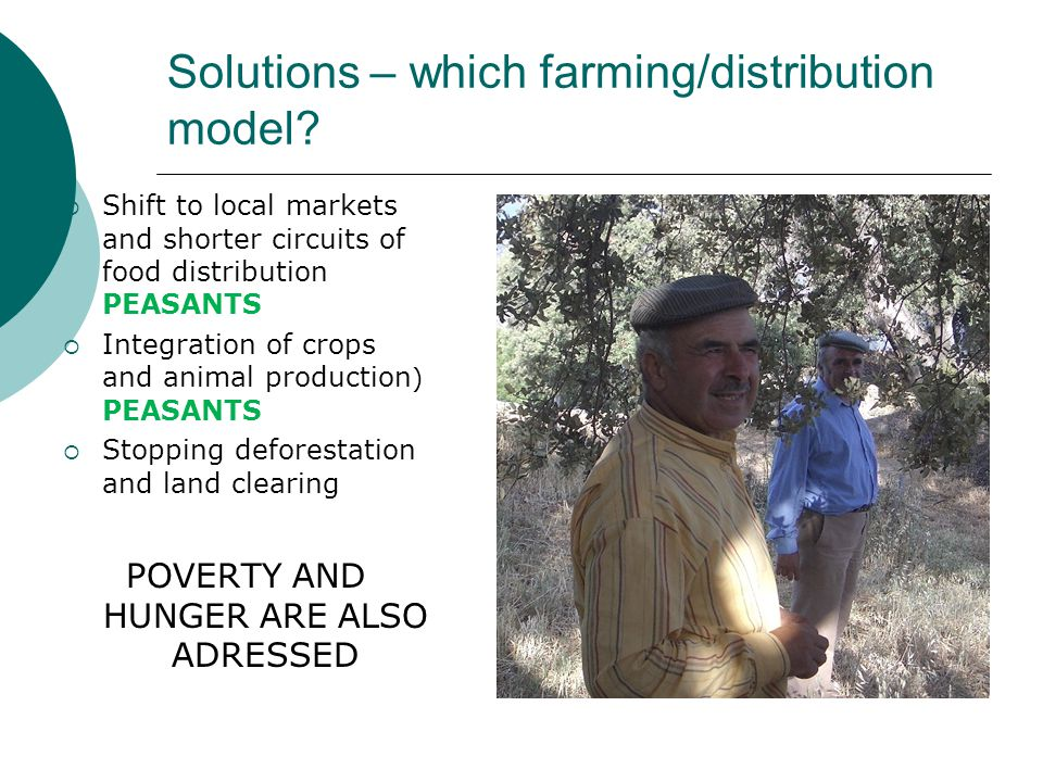 Solutions – which farming/distribution model.