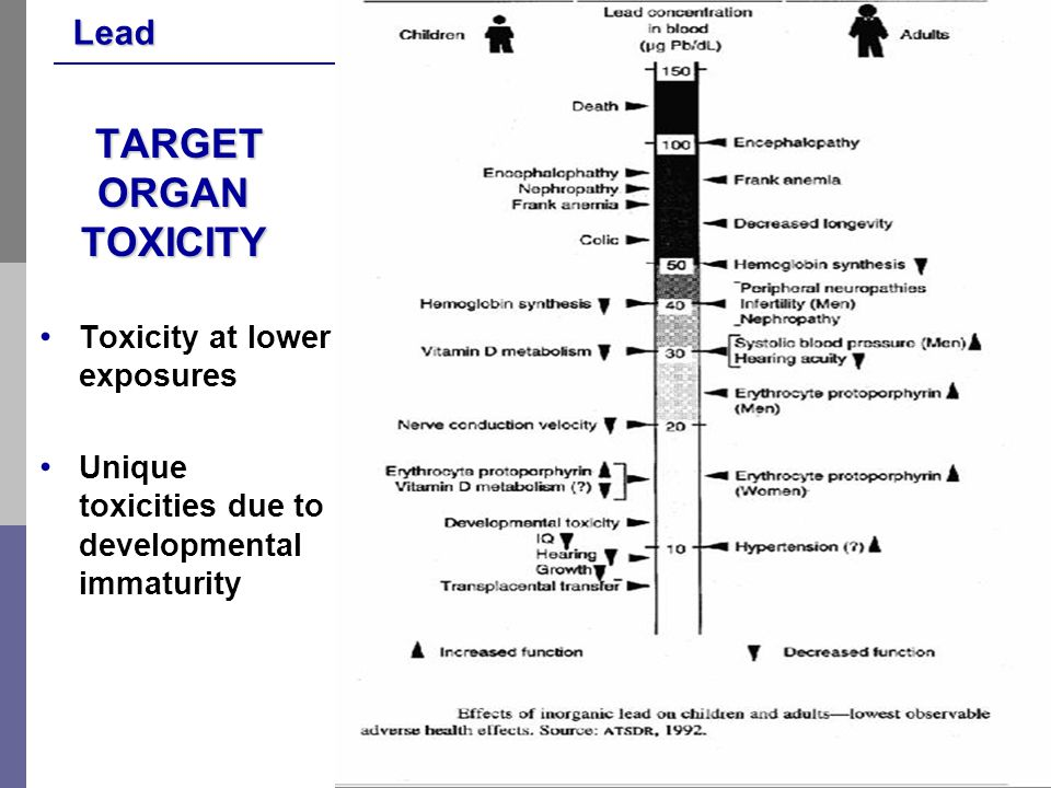 Lead 20 TARGET ORGAN TOXICITY TARGET ORGAN TOXICITY Toxicity at lower exposures Unique toxicities due to developmental immaturity