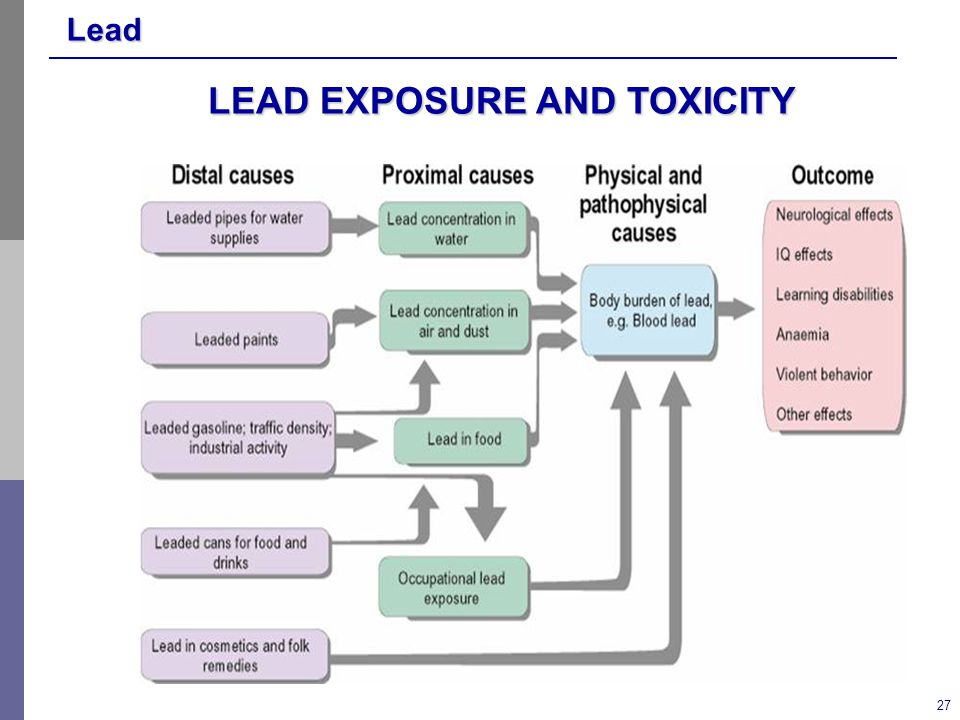 Lead 27 LEAD EXPOSURE AND TOXICITY