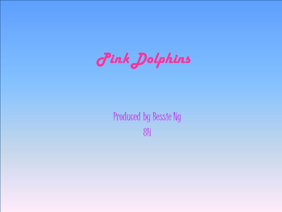 Pink Dolphins Produced by Bessie Ng 8H