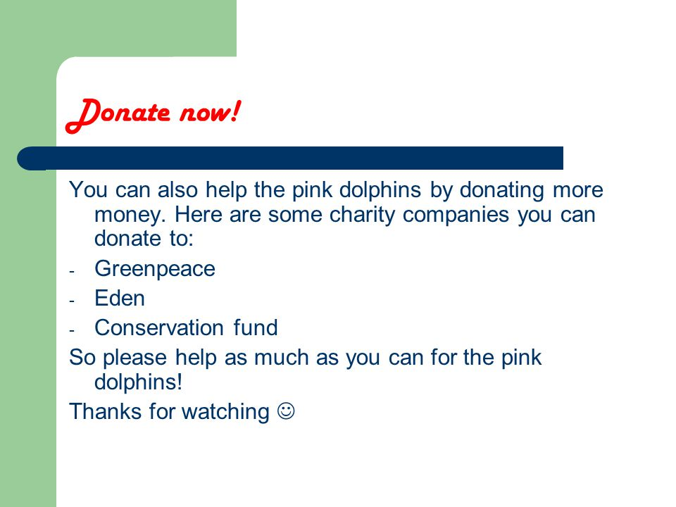Donate now. You can also help the pink dolphins by donating more money.