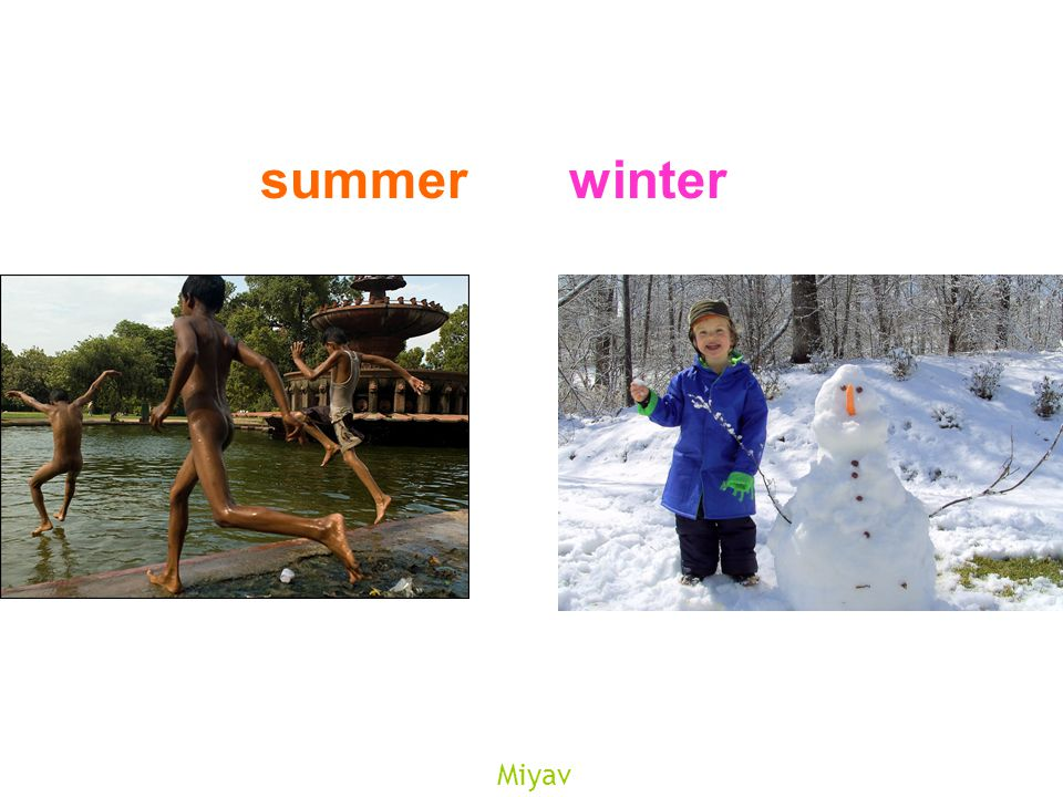Miyav summerwinter