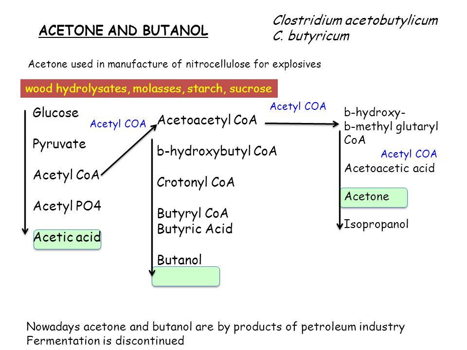 ACETONE AND BUTANOL Clostridium acetobutylicum C.