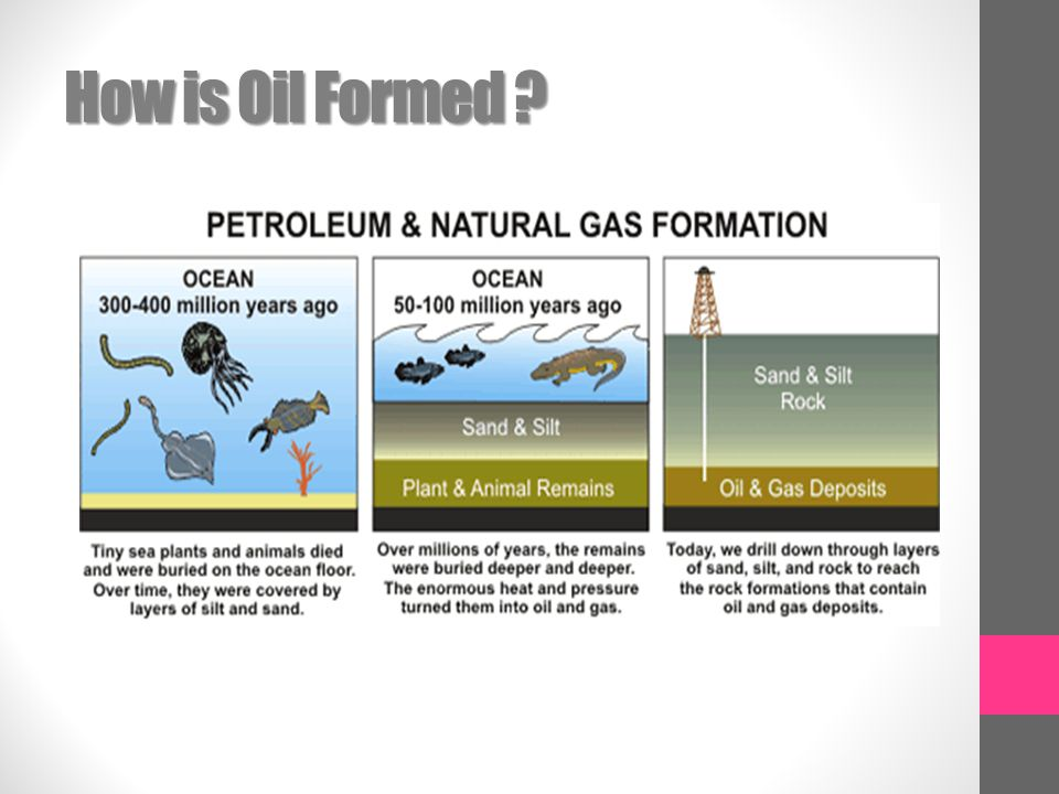How is Oil Formed ?
