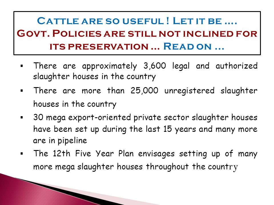  There are approximately 3,600 legal and authorized slaughter houses in the country  There are more than 25,000 unregistered slaughter houses in the country  30 mega export-oriented private sector slaughter houses have been set up during the last 15 years and many more are in pipeline  The 12th Five Year Plan envisages setting up of many more mega slaughter houses throughout the count ry