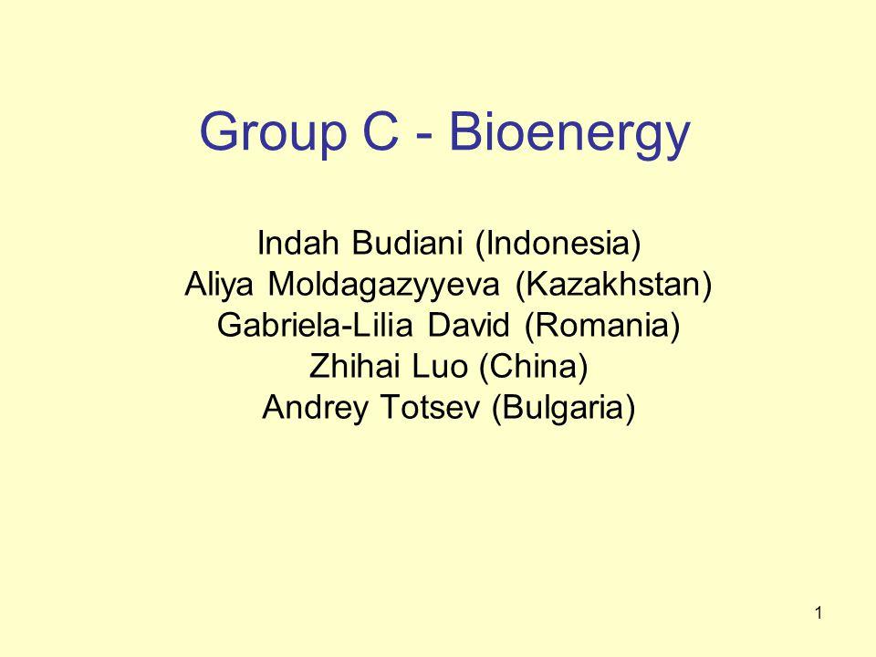 1 Group C - Bioenergy Indah Budiani (Indonesia) Aliya Moldagazyyeva (Kazakhstan) Gabriela-Lilia David (Romania) Zhihai Luo (China) Andrey Totsev (Bulgaria)