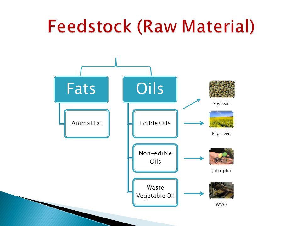 Fats Animal Fat Oils Edible Oils Non-edible Oils Waste Vegetable Oil Soybean Rapeseed JatrophaWVO