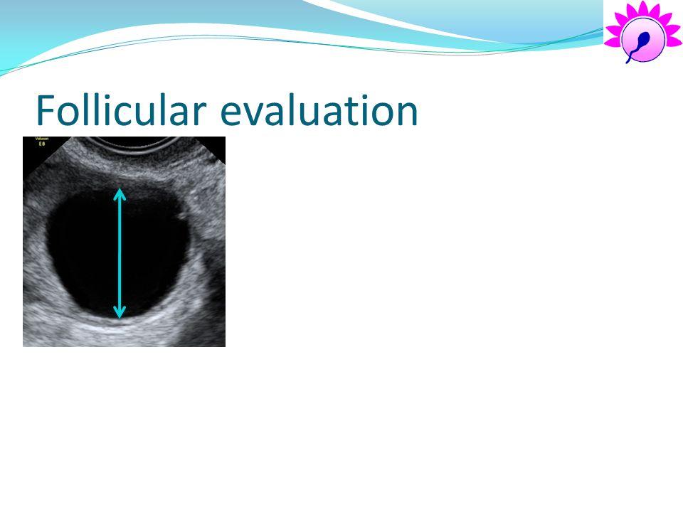 Follicular evaluation