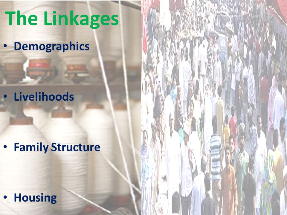 The Linkages Demographics Livelihoods Family Structure Housing
