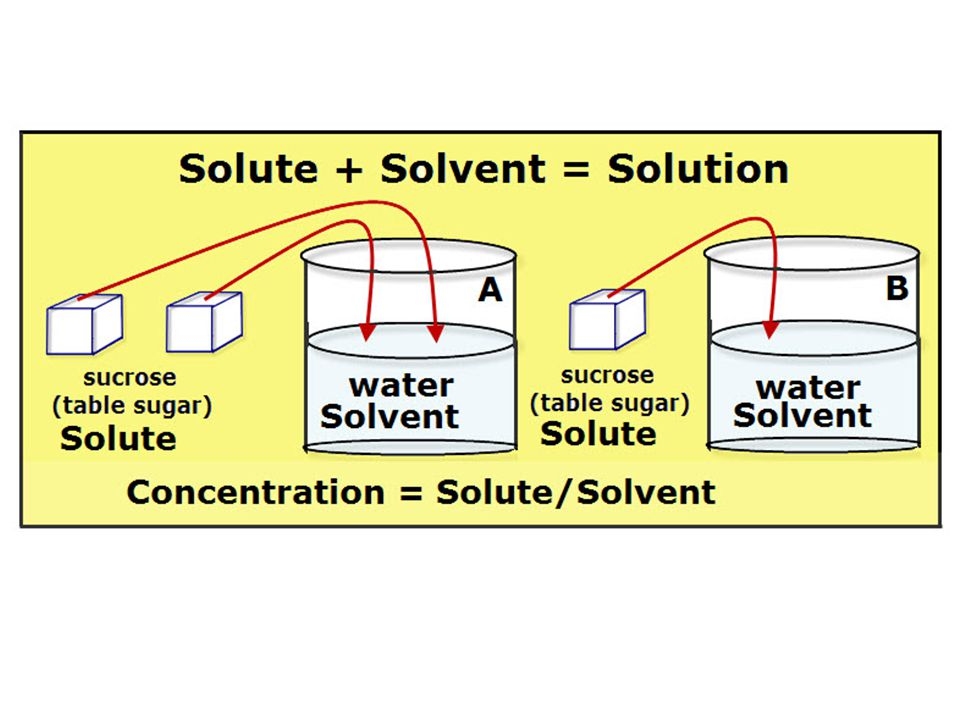 Diffusion of solvents When two solutions are isotonic there is no net movement of solvent -- that means, an equal number of solvent molecules cross the membrane in both directions, so the concentration of the solute does not change.