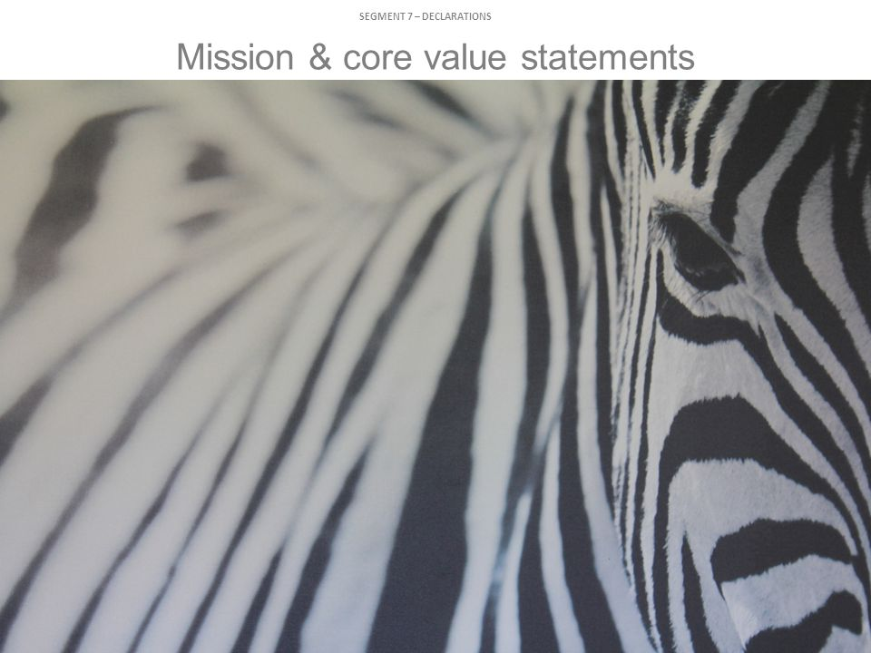 Mission & core value statements SEGMENT 7 – DECLARATIONS