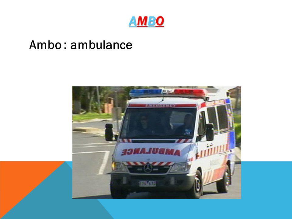 AMBOAMBOAMBOAMBO Ambo : ambulance