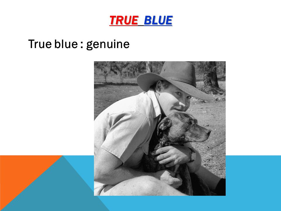 TRUE BLUE True blue : genuine