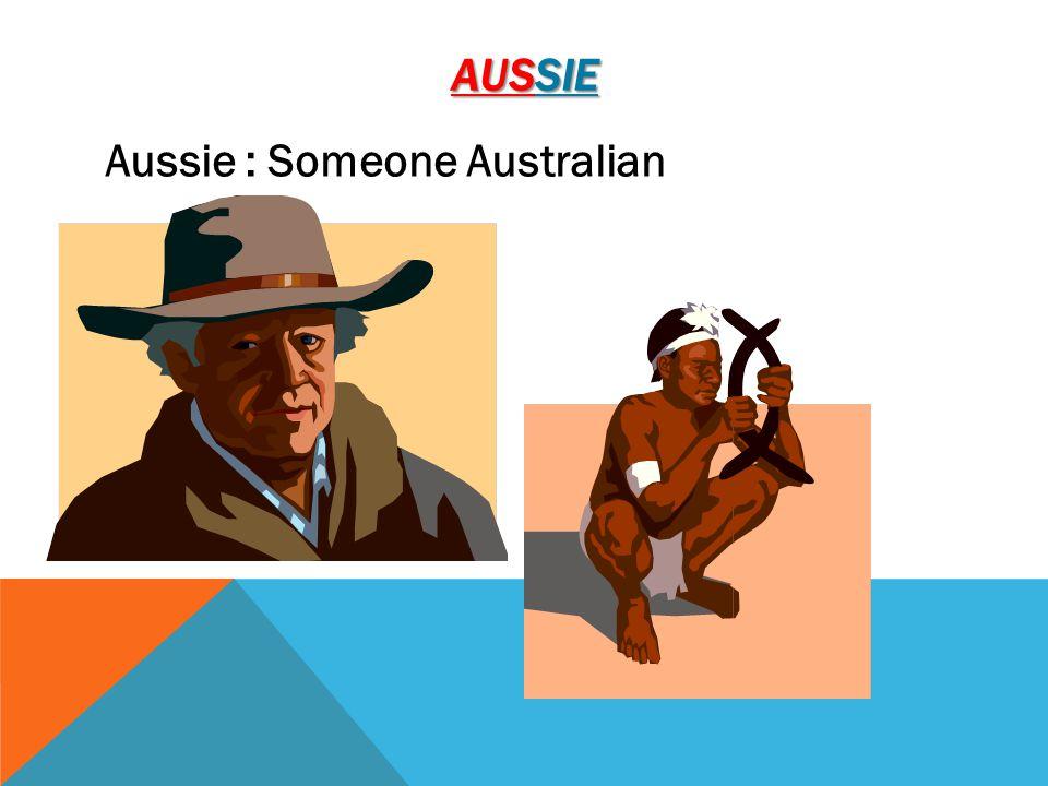 AUSSIE Aussie : Someone Australian