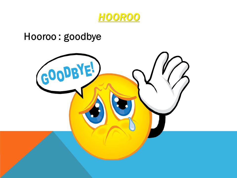 HOOROO Hooroo : goodbye