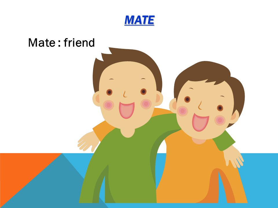 MATE Mate : friend