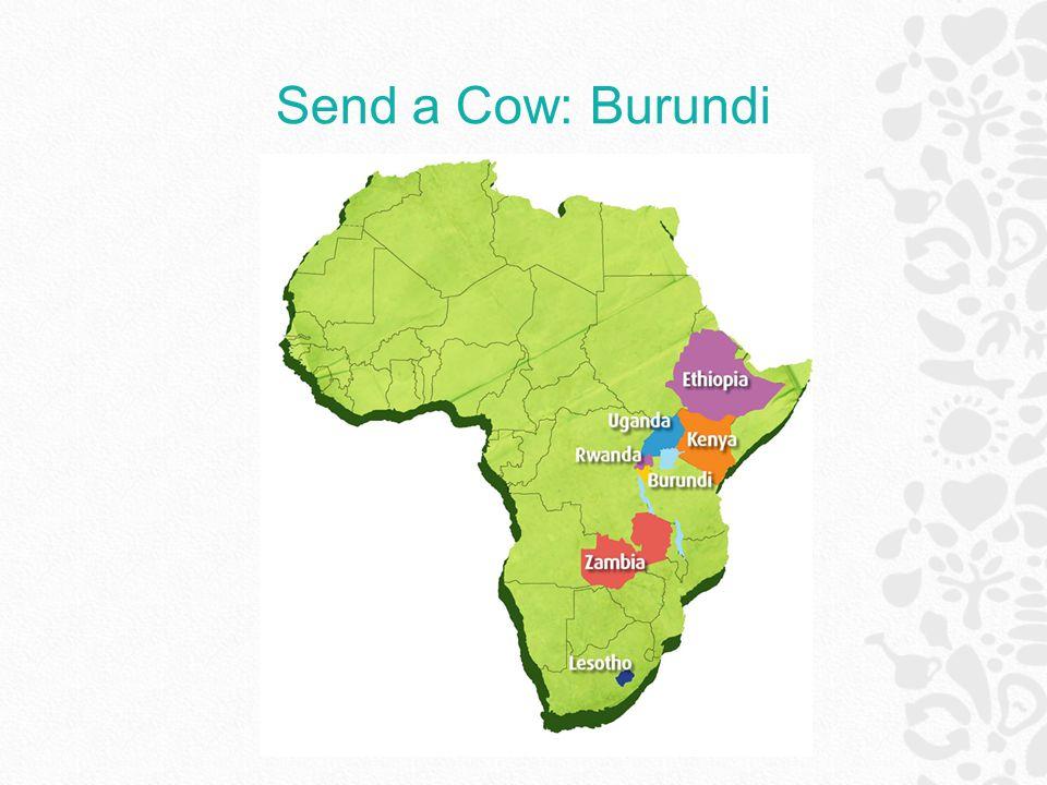 Send a Cow: Burundi