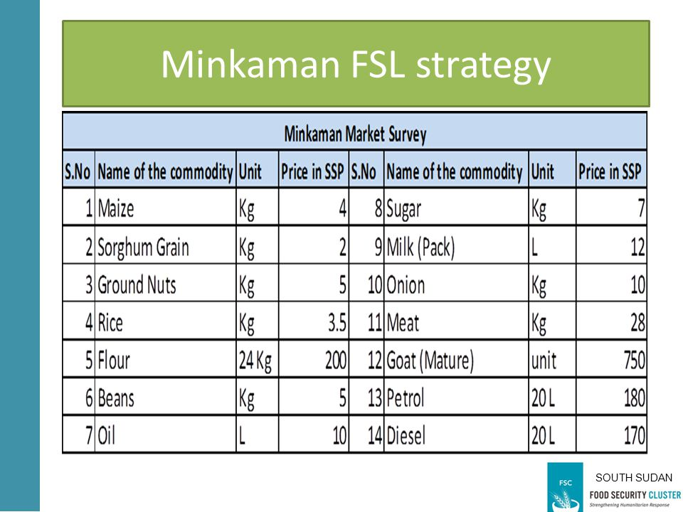 SOUTH SUDAN Minkaman FSL strategy