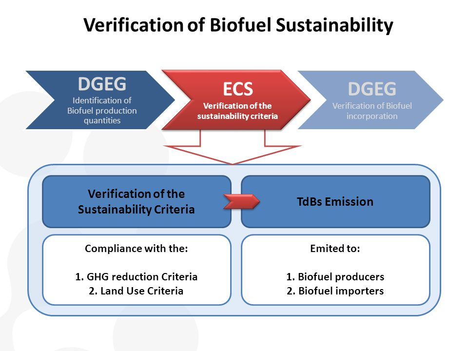 DGEG Identification of Biofuel production quantities ECS Verification of the sustainability criteria DGEG Verification of Biofuel incorporation Verification of the Sustainability Criteria Compliance with the: 1.