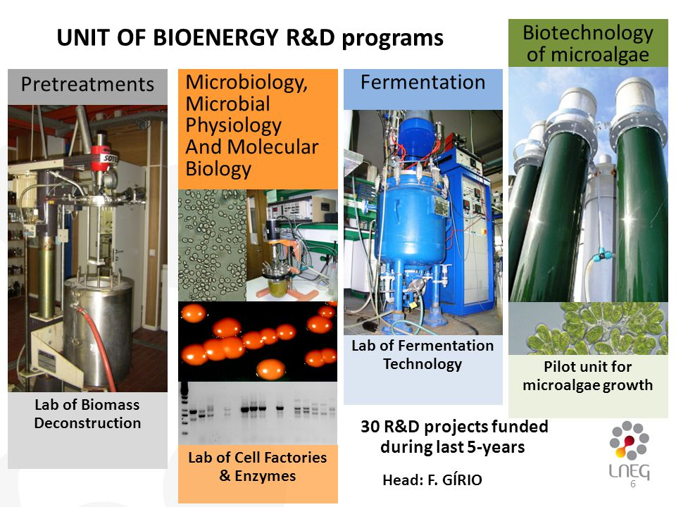 Pretreatments Lab of Biomass Deconstruction 30 R&D projects funded during last 5-years Lab of Fermentation Technology Fermentation Biotechnology of microalgae Pilot unit for microalgae growth Microbiology, Microbial Physiology And Molecular Biology Lab of Cell Factories & Enzymes UNIT OF BIOENERGY R&D programs 6 Head: F.