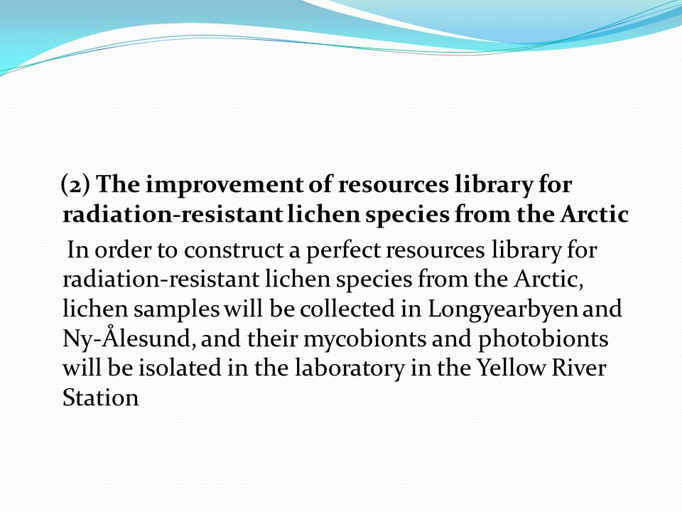 (2) The improvement of resources library for radiation-resistant lichen species from the Arctic In order to construct a perfect resources library for radiation-resistant lichen species from the Arctic, lichen samples will be collected in Longyearbyen and Ny-Ålesund, and their mycobionts and photobionts will be isolated in the laboratory in the Yellow River Station