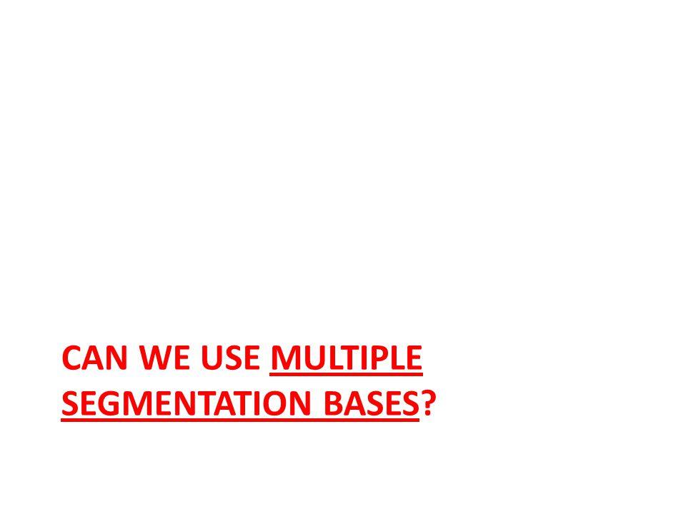 CAN WE USE MULTIPLE SEGMENTATION BASES?