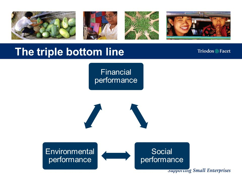 The triple bottom line Financial performance Social performance Environmental performance